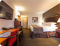 Relax And Be Entertained In BEST WESTERN Airport Inn Calgary